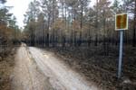 Läänemaa Suursoo Maastikukaitseala. Kaitsta on vähe jäänud.