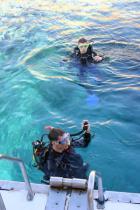 Sukeldujad Egiptuses