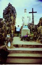 Ristimägi Palanga lähedal: mägi, kuhu hakati tooma riste, on nüüd nende alla mattunud.