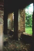 Vaatega järvele. Lodijärve ehk Klooga lossi järvevaade on aga võsa taga.